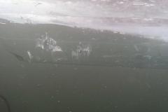 2012-02-12 Eistauchen HM (48)